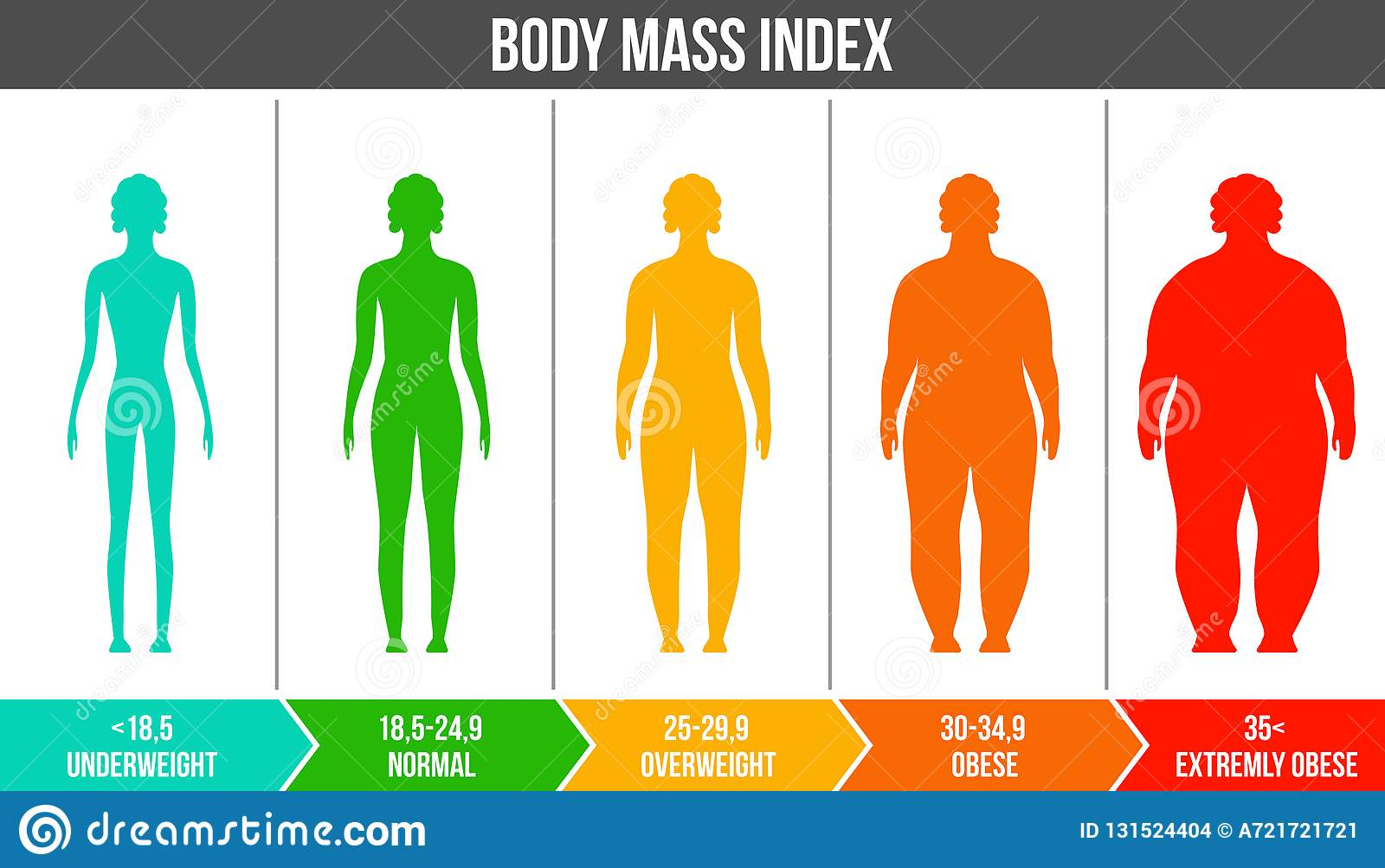 Creative vector illustration of bmi, body mass index infographic chart with silhouettes and scale isolated on