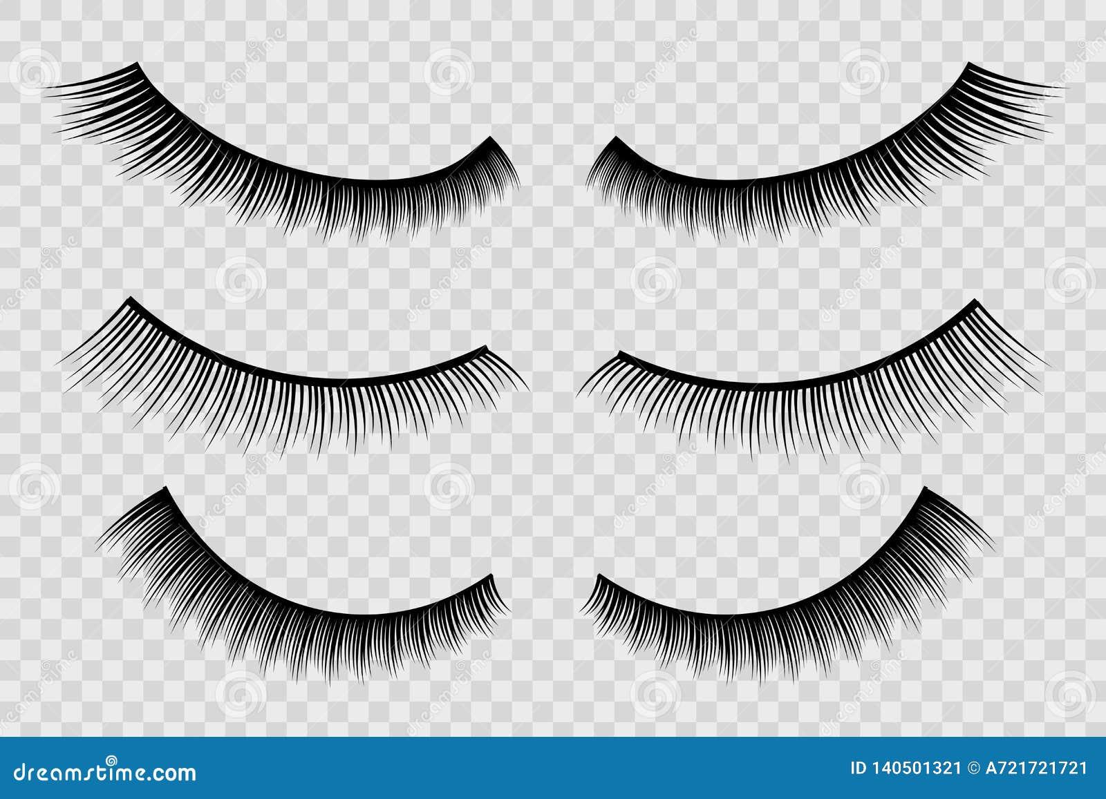 4cce9aa6381 Creative vector illustration of false eyelashes, female lashes, mascara lash  brush isolated on transparent background. Art design thick cilia beautiful  ...