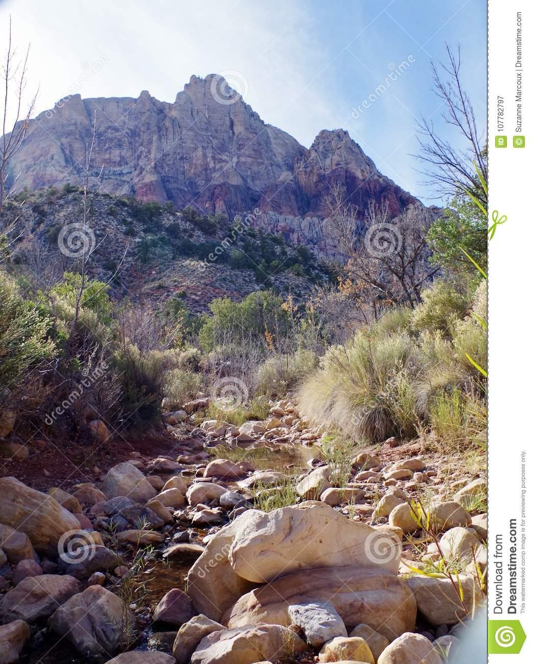 Red Rock Canyon Conservation Area, Nevada, USA
