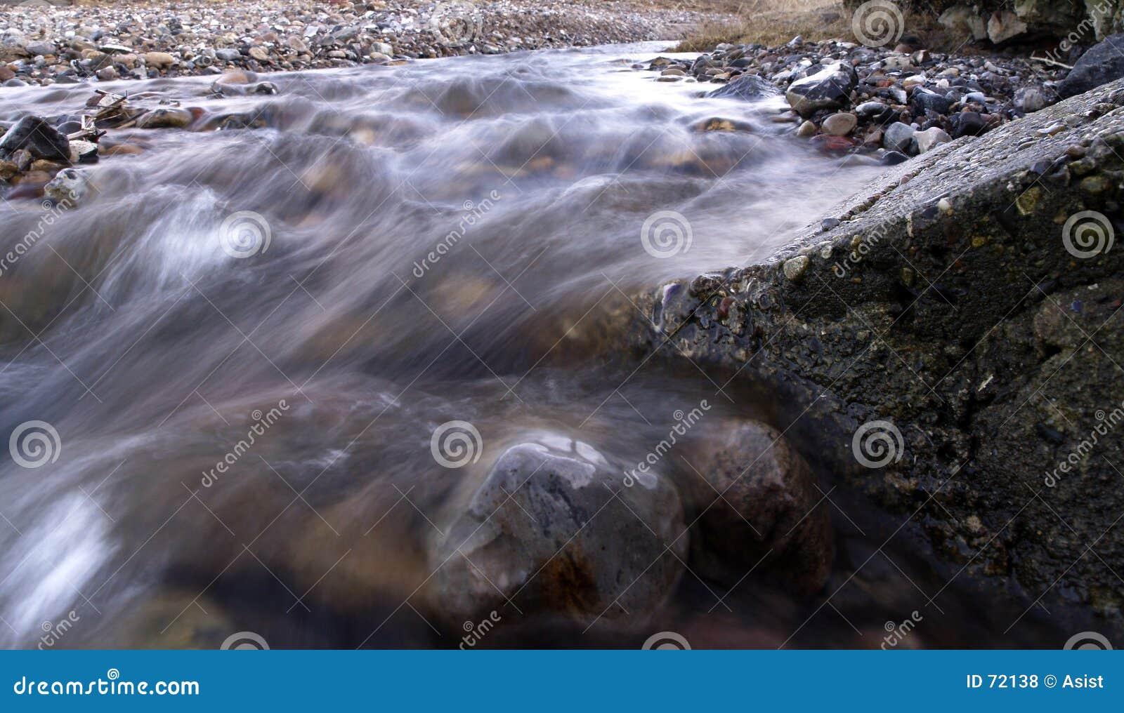 Creek close-up