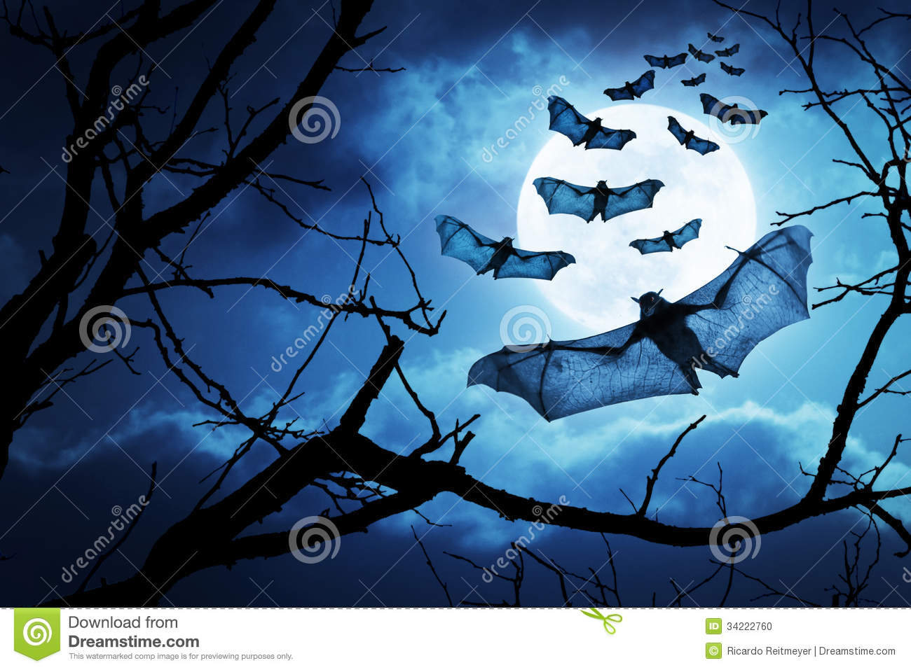 Creepy Bats Fly In For Halloween Night By A Full Moon
