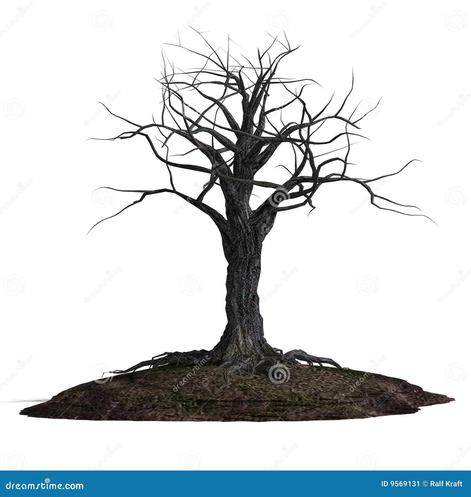 creepy tree stock illustration  illustration of knurl