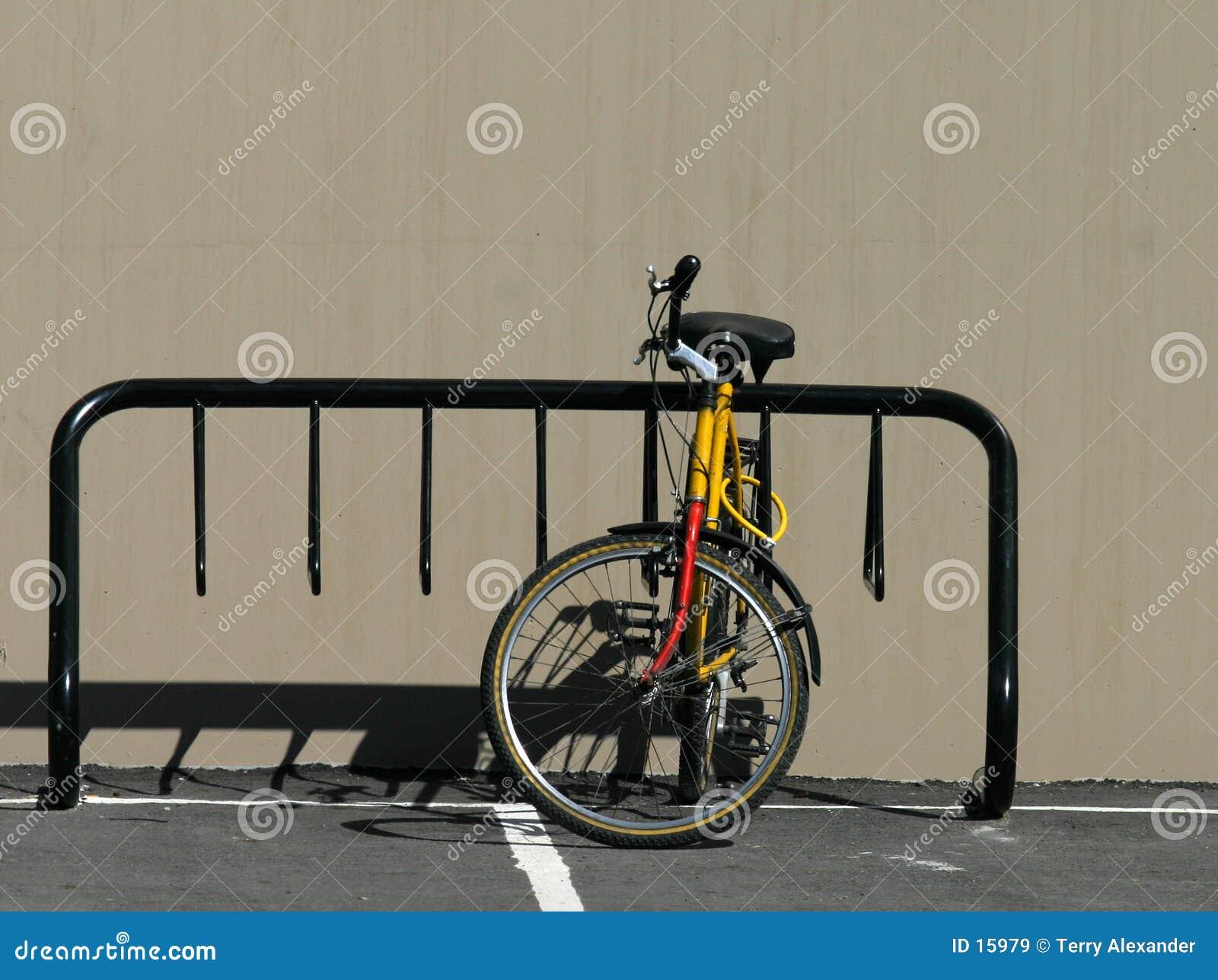 Cremalheira da bicicleta com bicicleta