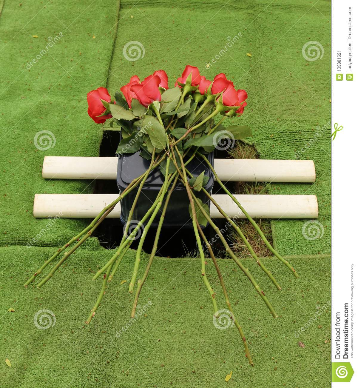 Cremation Urn For Burial With Red Roses Stock Image - Image