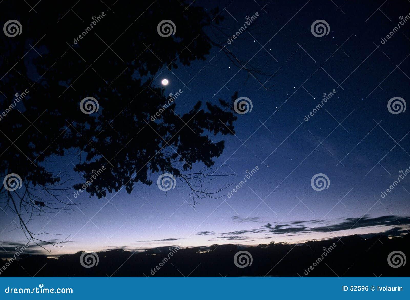 Crepúsculo na bacia de Amazon