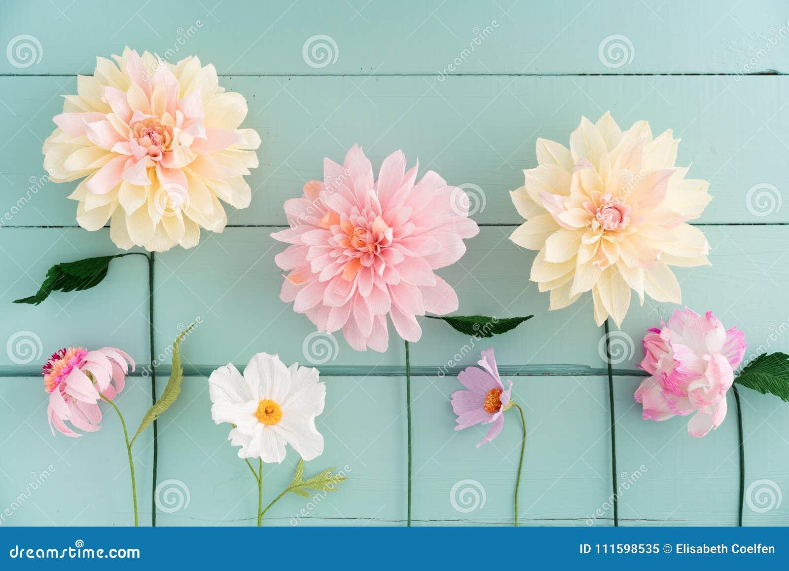 Fiori Carta Crespa.Crepe Paper Flowers Stock Image Image Of Dahlias Paper 111598535