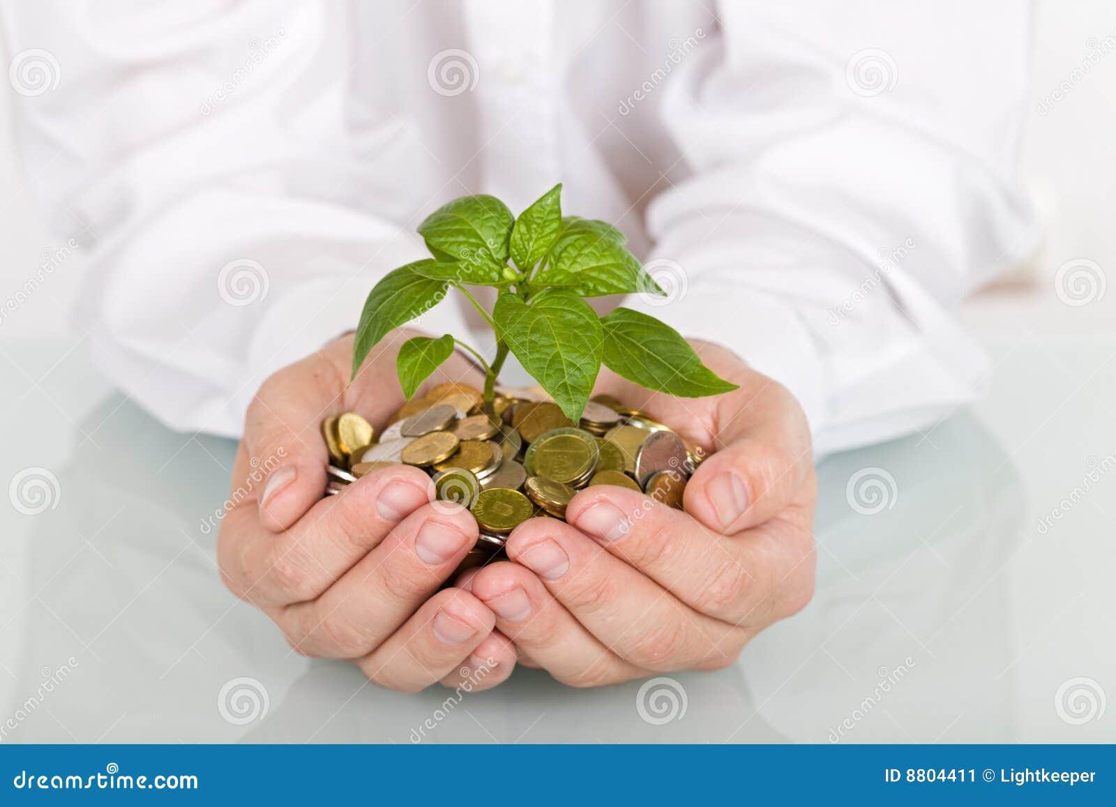 Crescimento do bom investimento