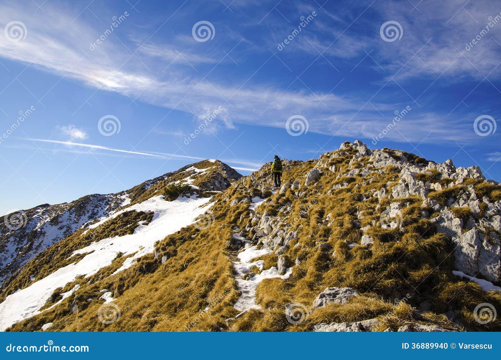 Download Cresta rocciosa fotografia stock. Immagine di orizzonte - 36889940