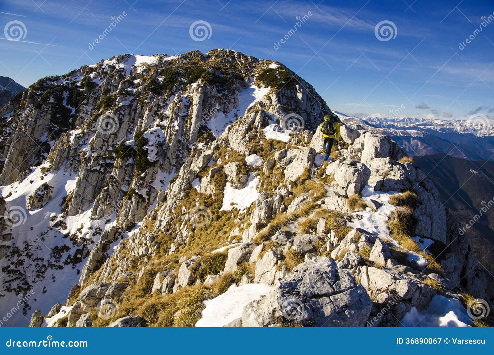 Download Cresta rocciosa immagine stock. Immagine di romania, nave - 36890067
