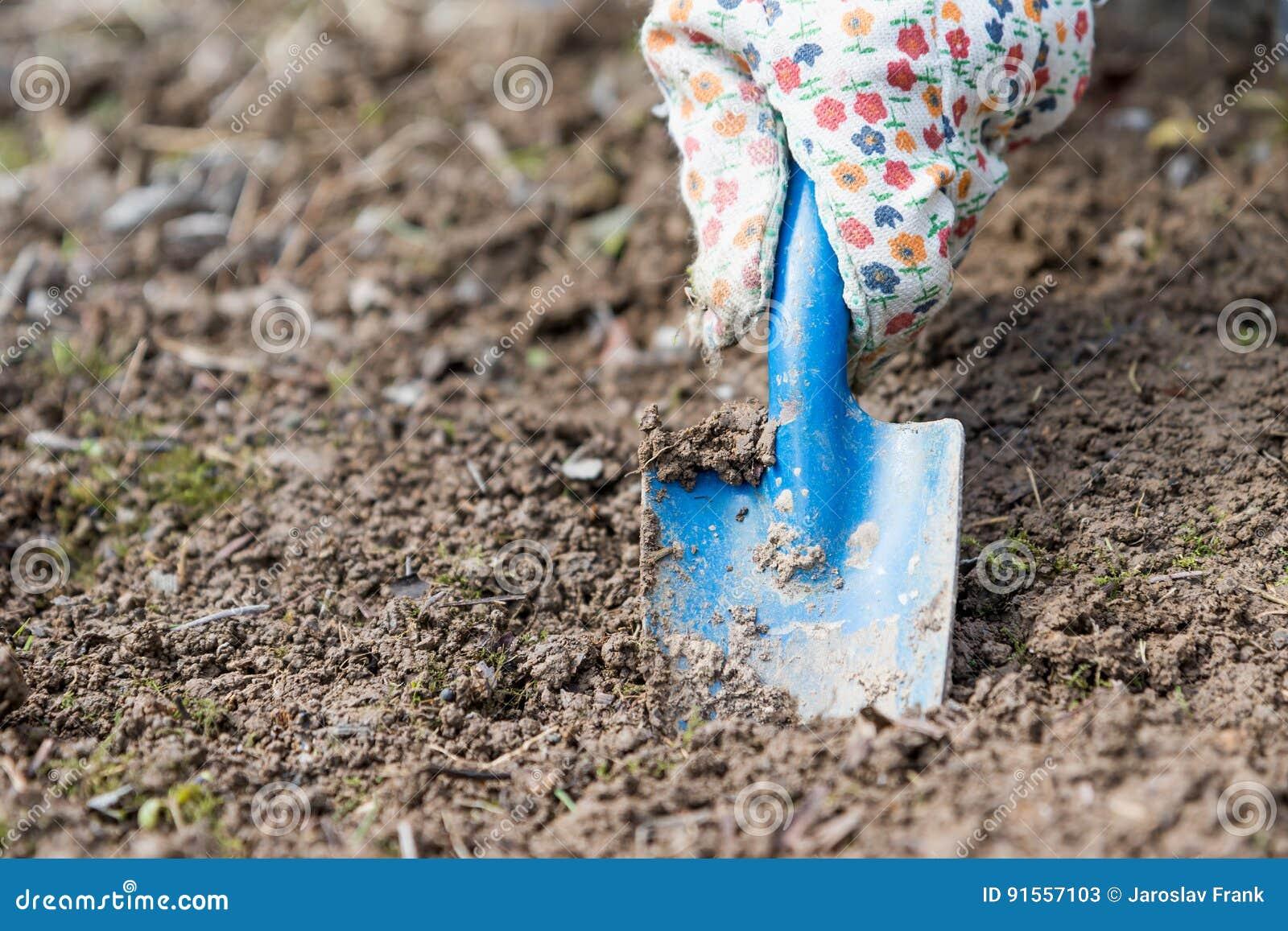Creusement du trou dans le sol avec une lame de jardin