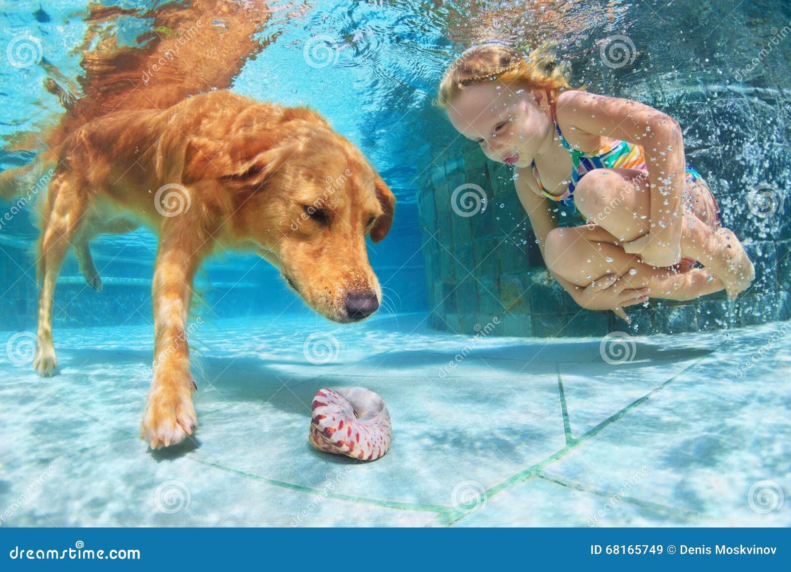 Criança com o mergulho do cão subaquático na piscina
