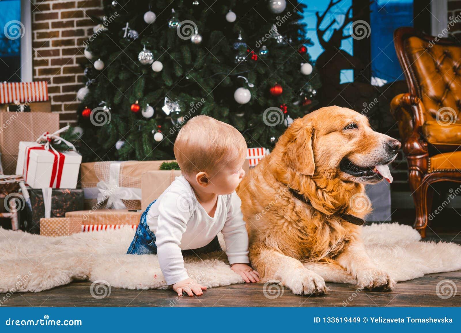 Criança do homem da amizade e animal de estimação do cão Feriados de inverno do ano novo do Natal do tema Bebê na árvore decorada