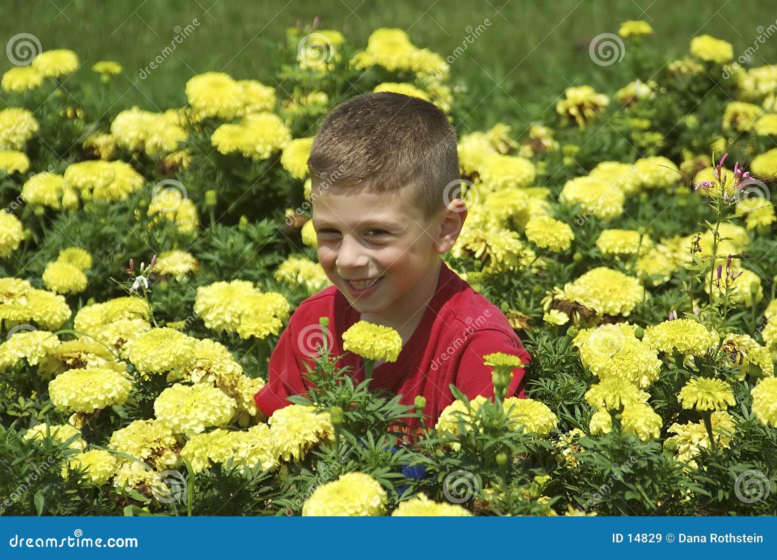 Criança na cama de flor