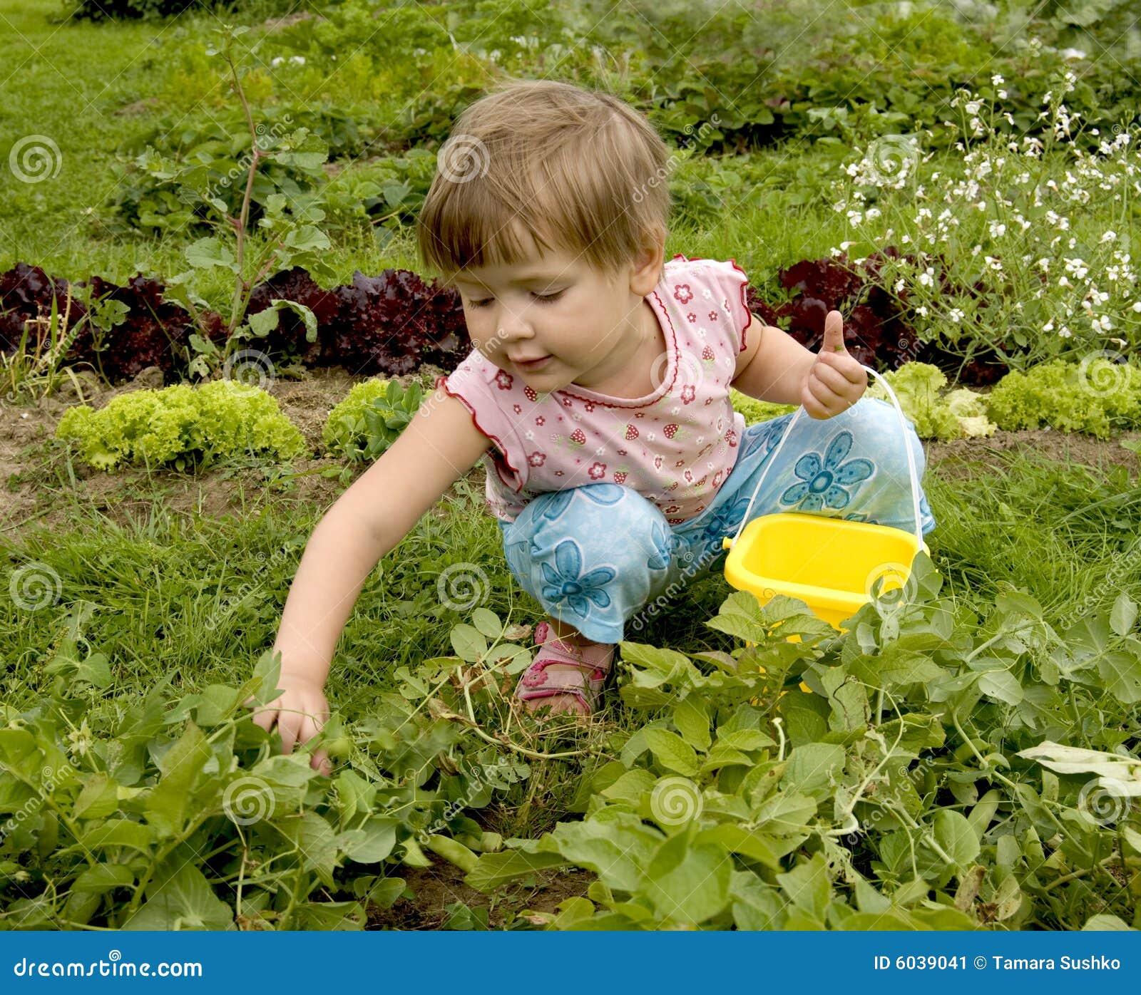 Criança na horta