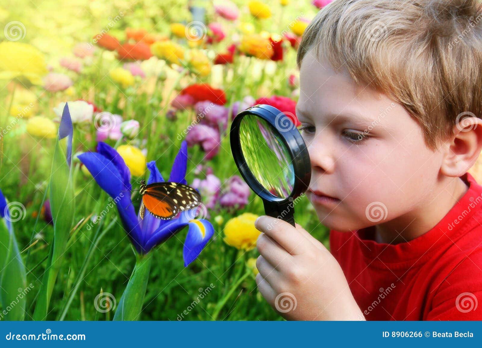 Criança observando uma borboleta