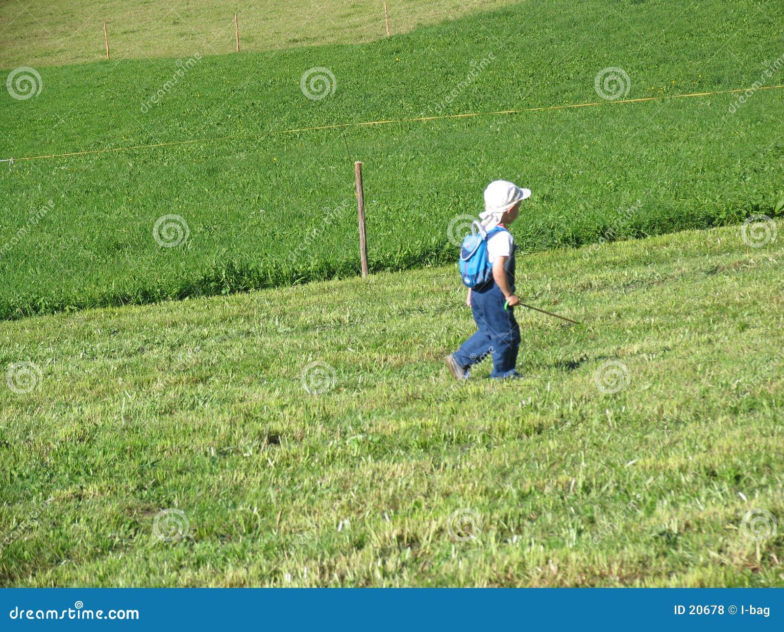 Criança que anda no prado