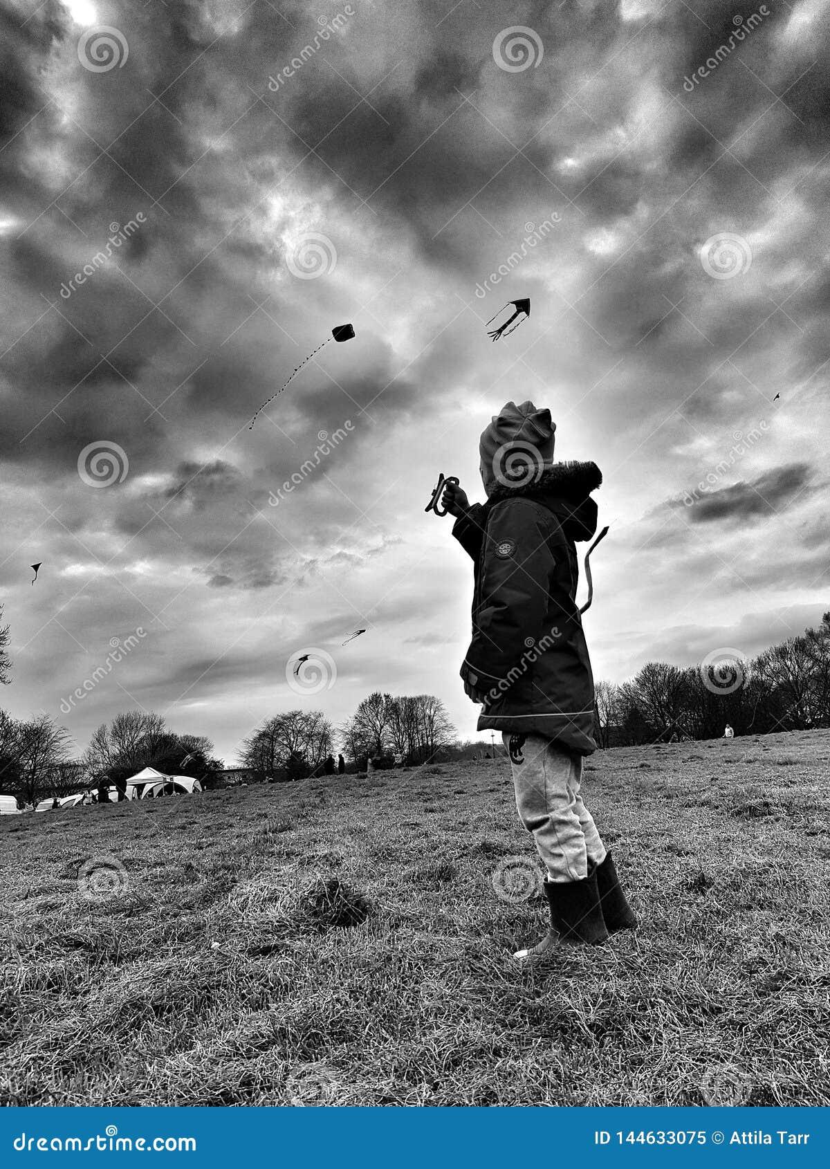 Criança que voa um papagaio em um parque