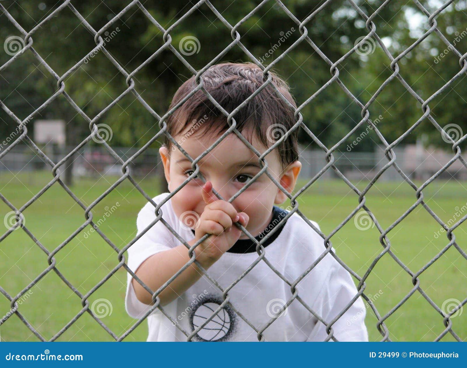 Crianças: Menino que perscruta através da cerca