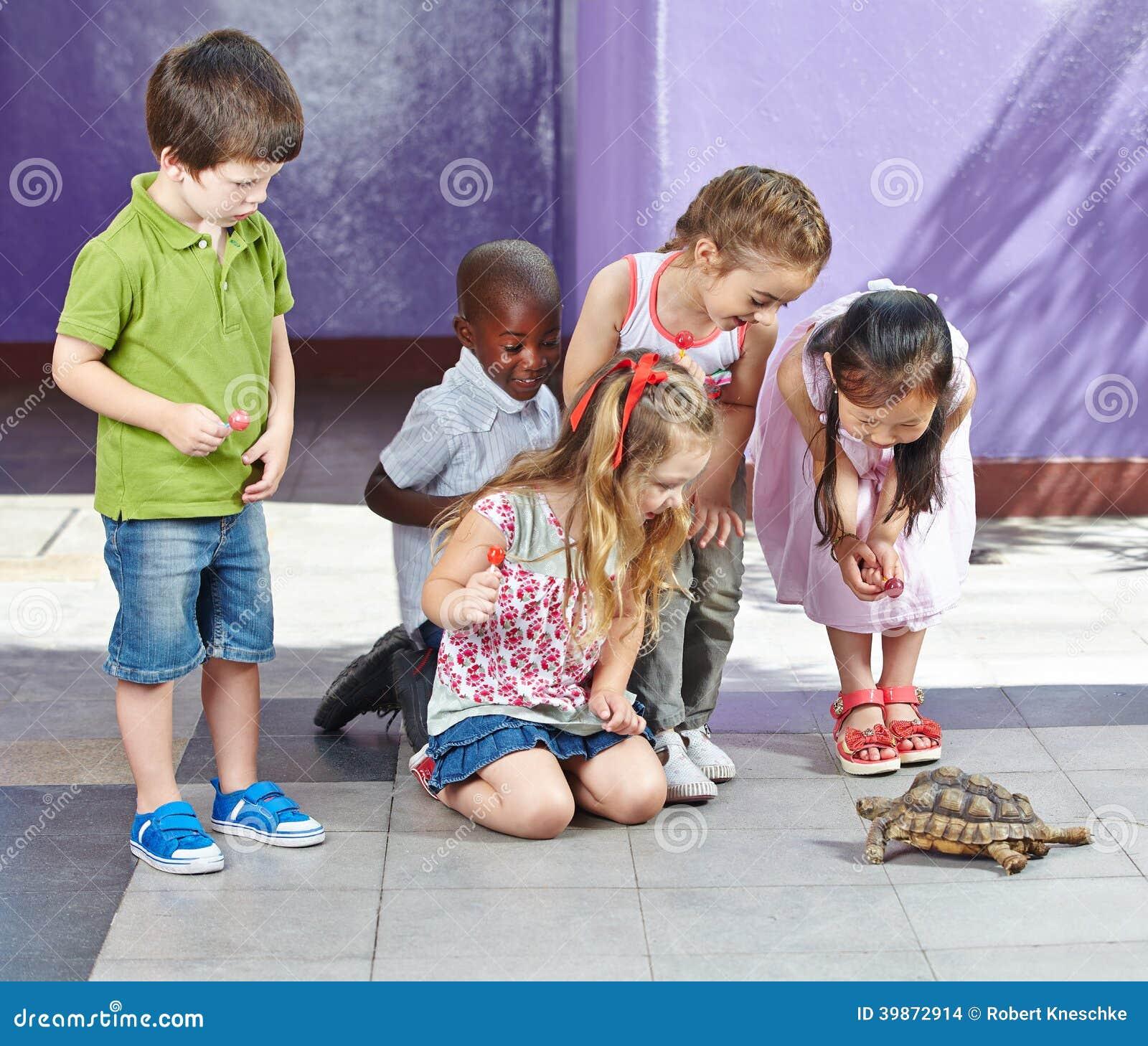 Crianças no jardim zoológico de trocas de carícias que olha