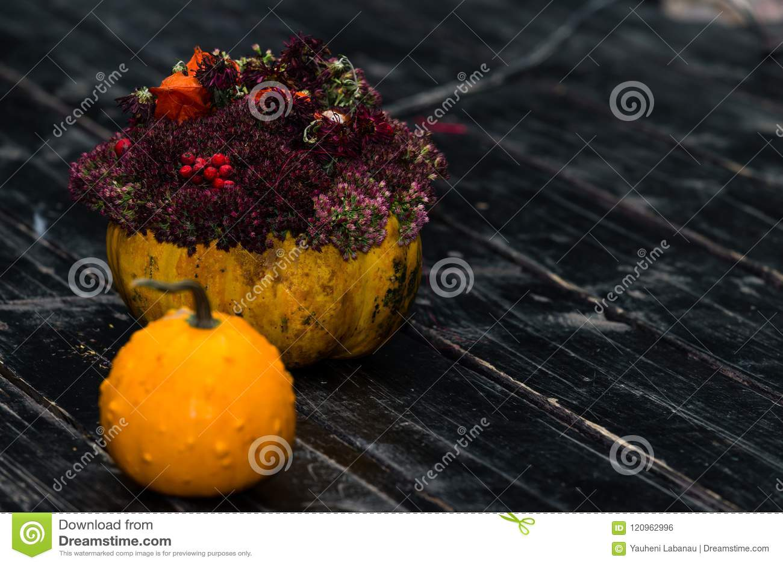 Cric de potiron de Halloween et potiron avec des fleurs sur b en bois foncé