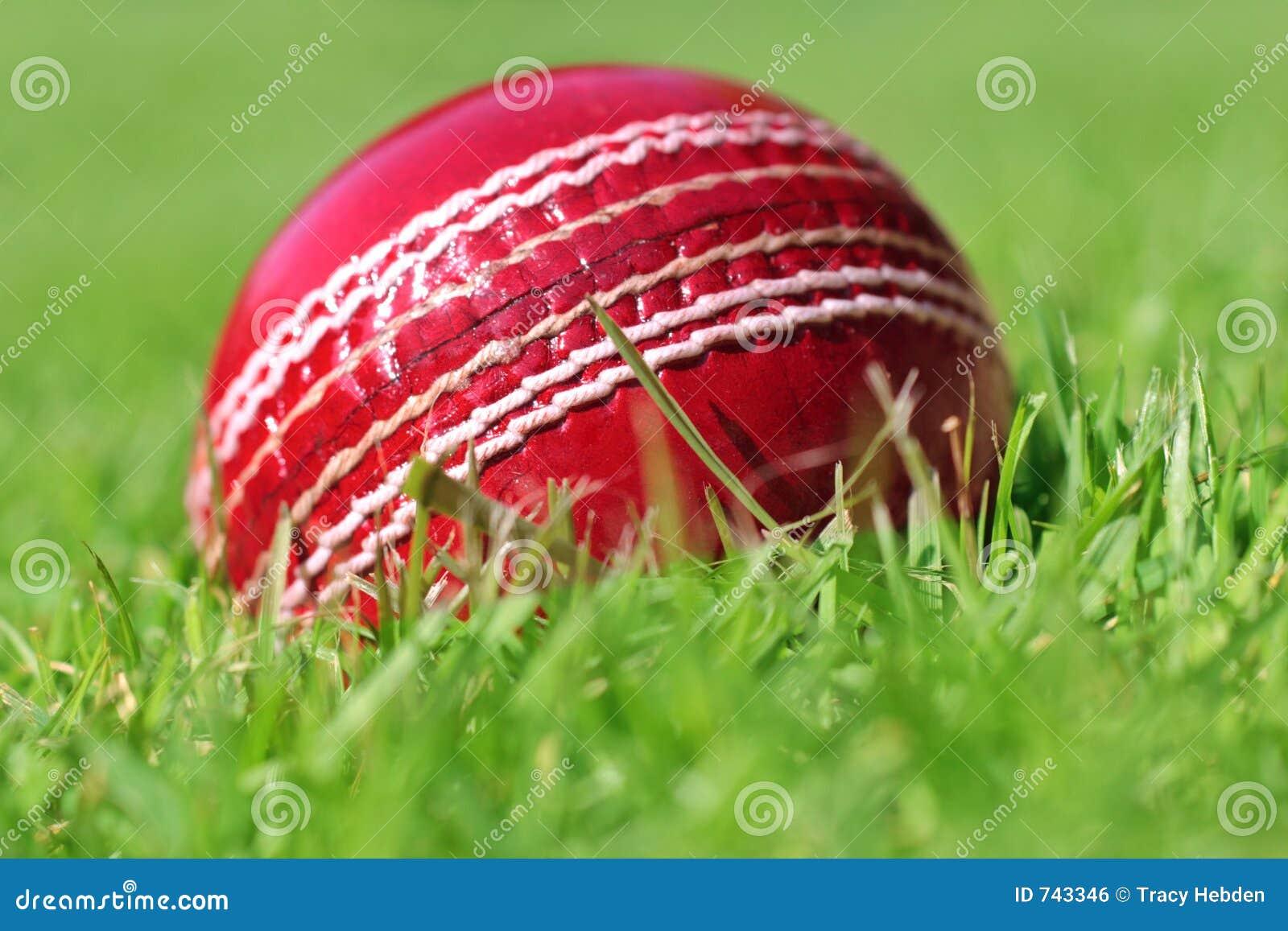 Cricket Ball Royalty Free Stock Image