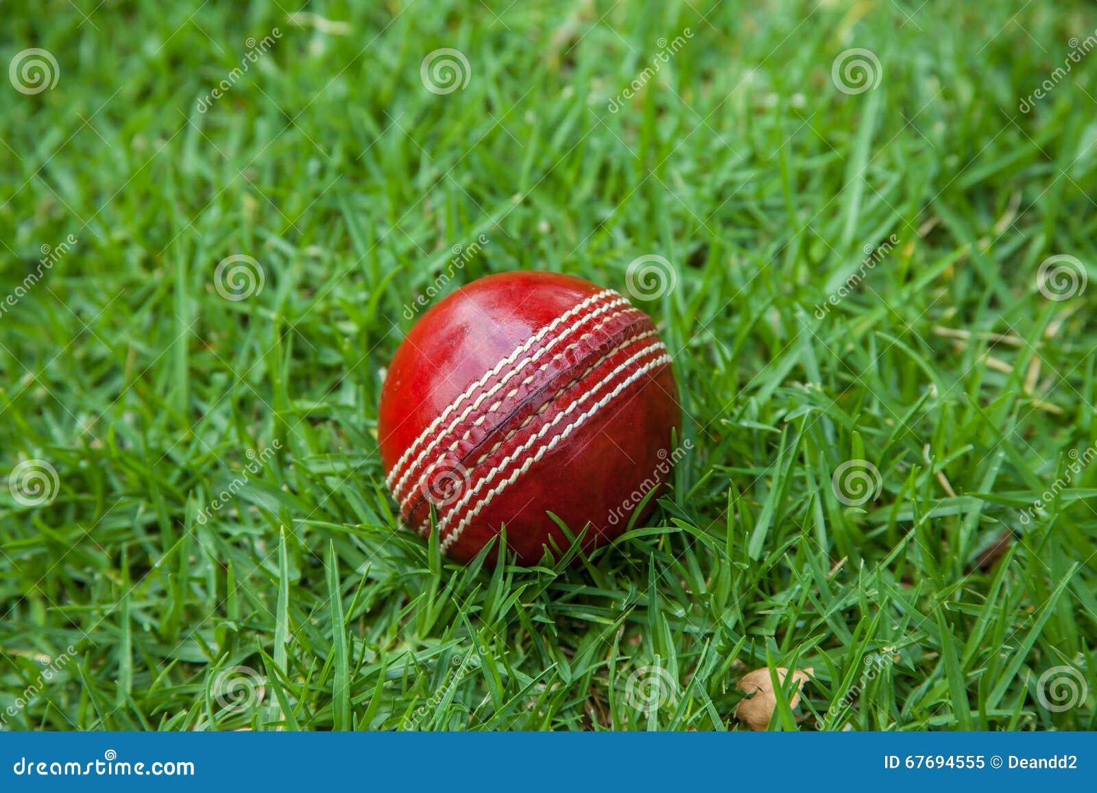 Cork Ball Cricket Bat: Cricket Ball Stock Photo