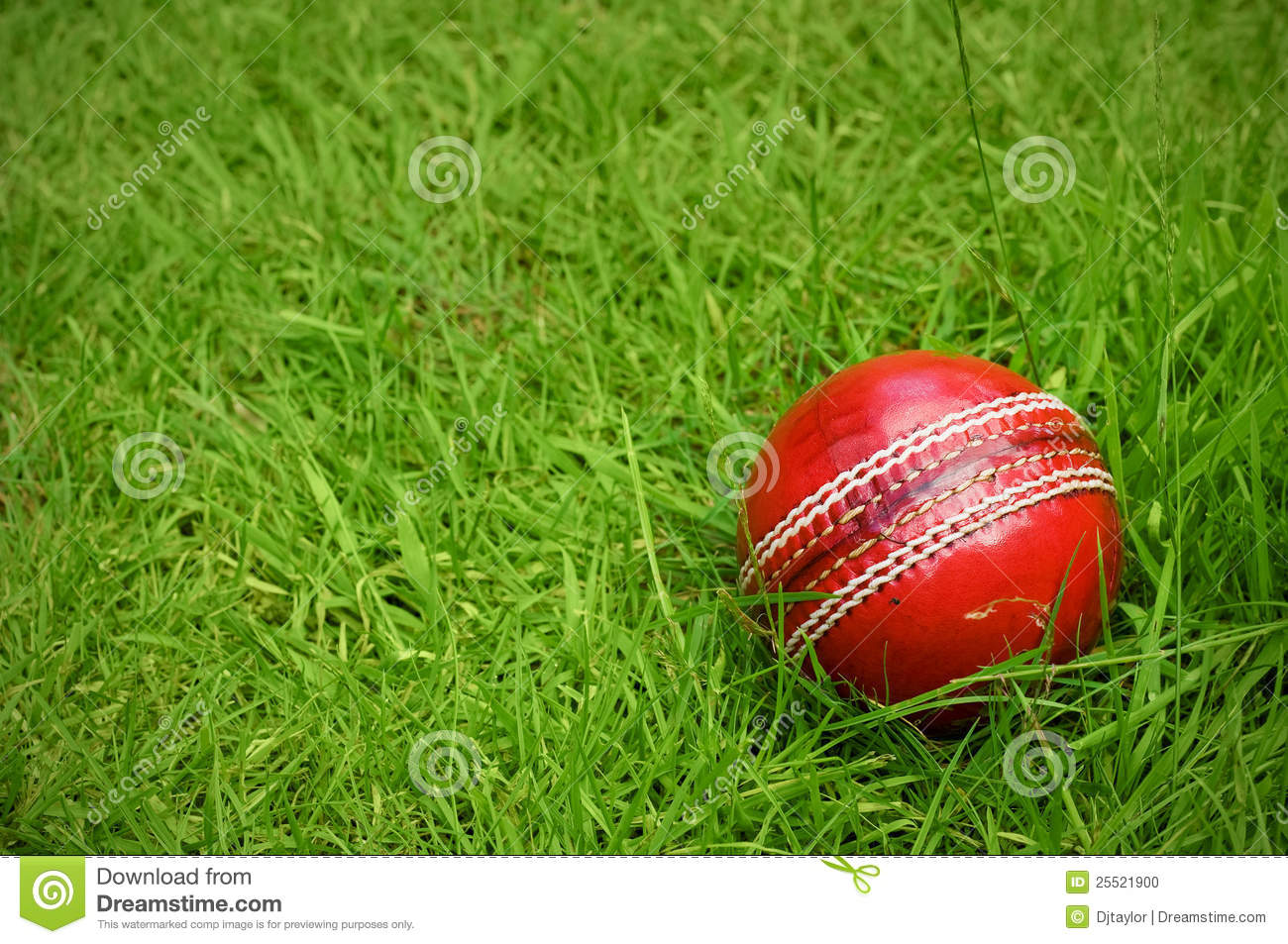 how to create cricket pitch