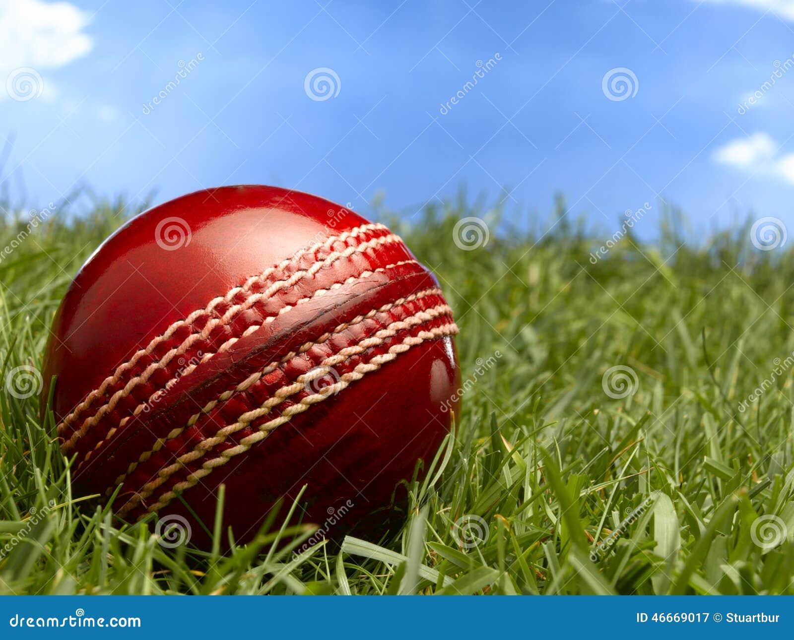 Cork Ball Cricket Bat: Cricket Ball Royalty-Free Stock Photo