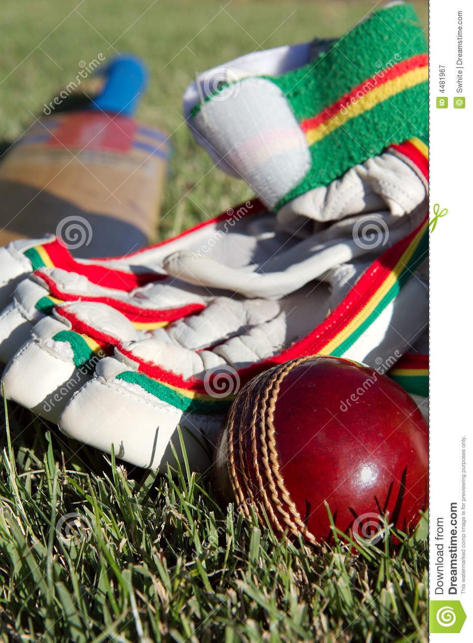 Cricket equipment.