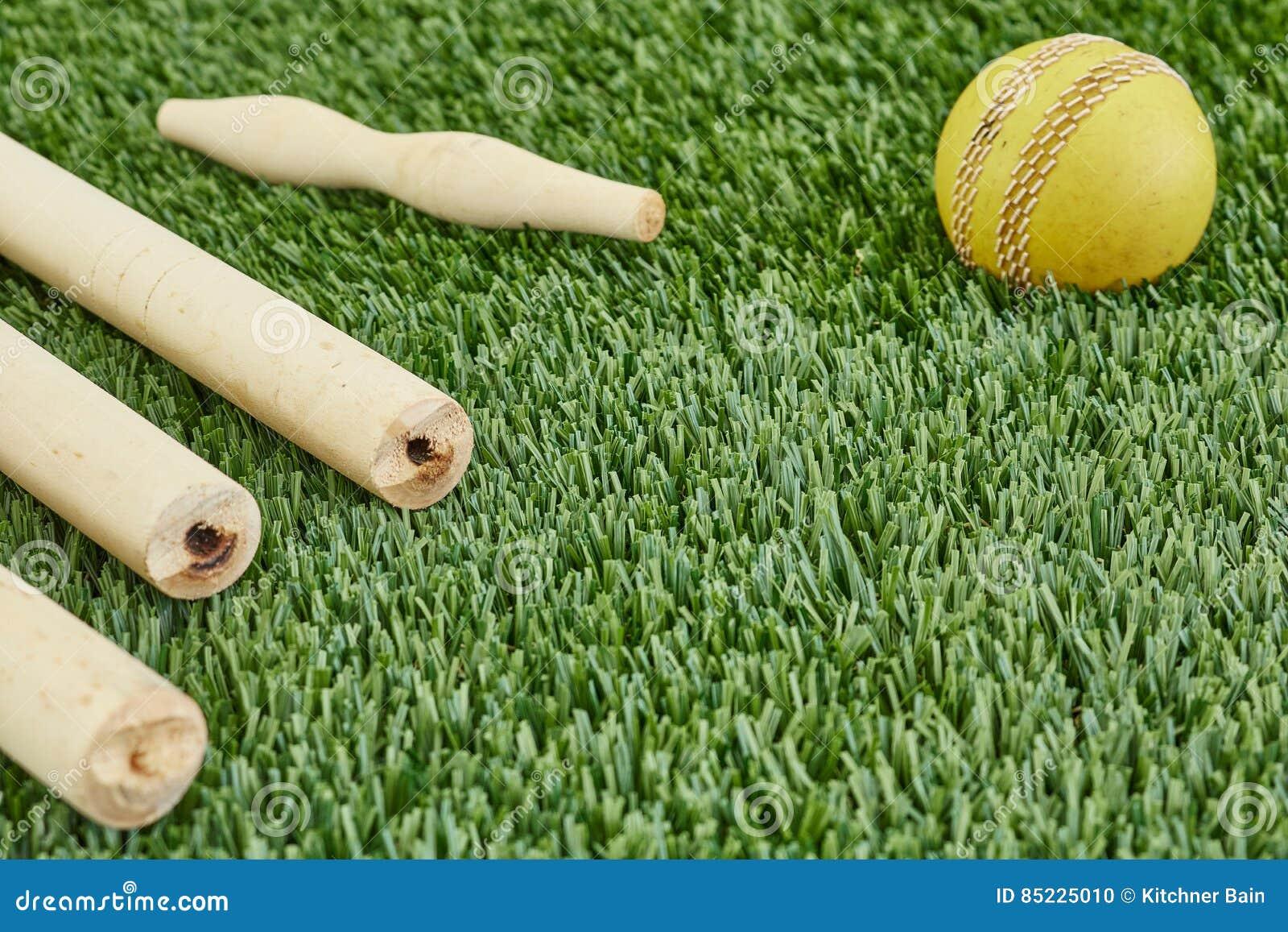 cricket-equipment-studio-photo-gear-grass-85225010.jpg