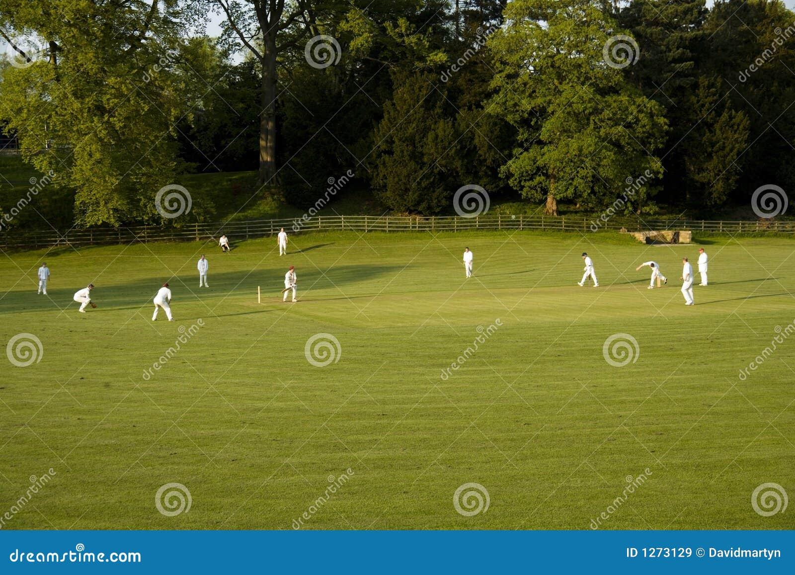 Cricket match on a summer evening ashford in the water peak dist