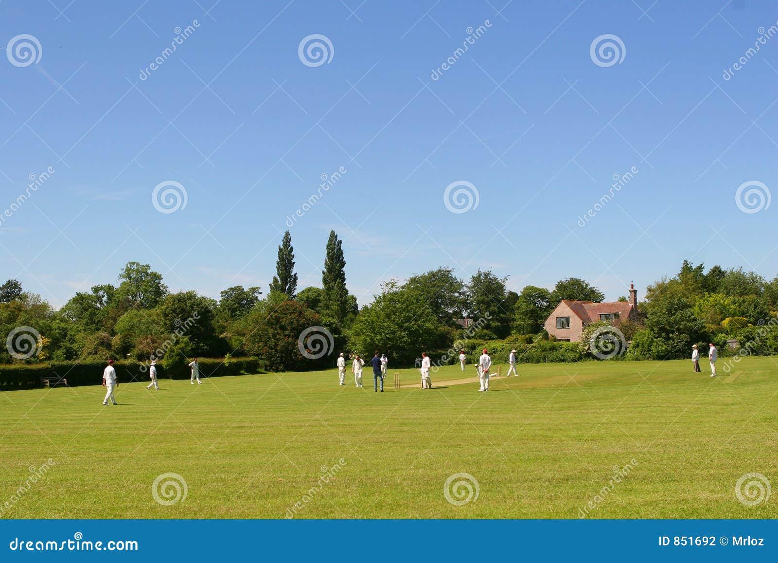 Cricket zielone przestrzeni tekstu wioski