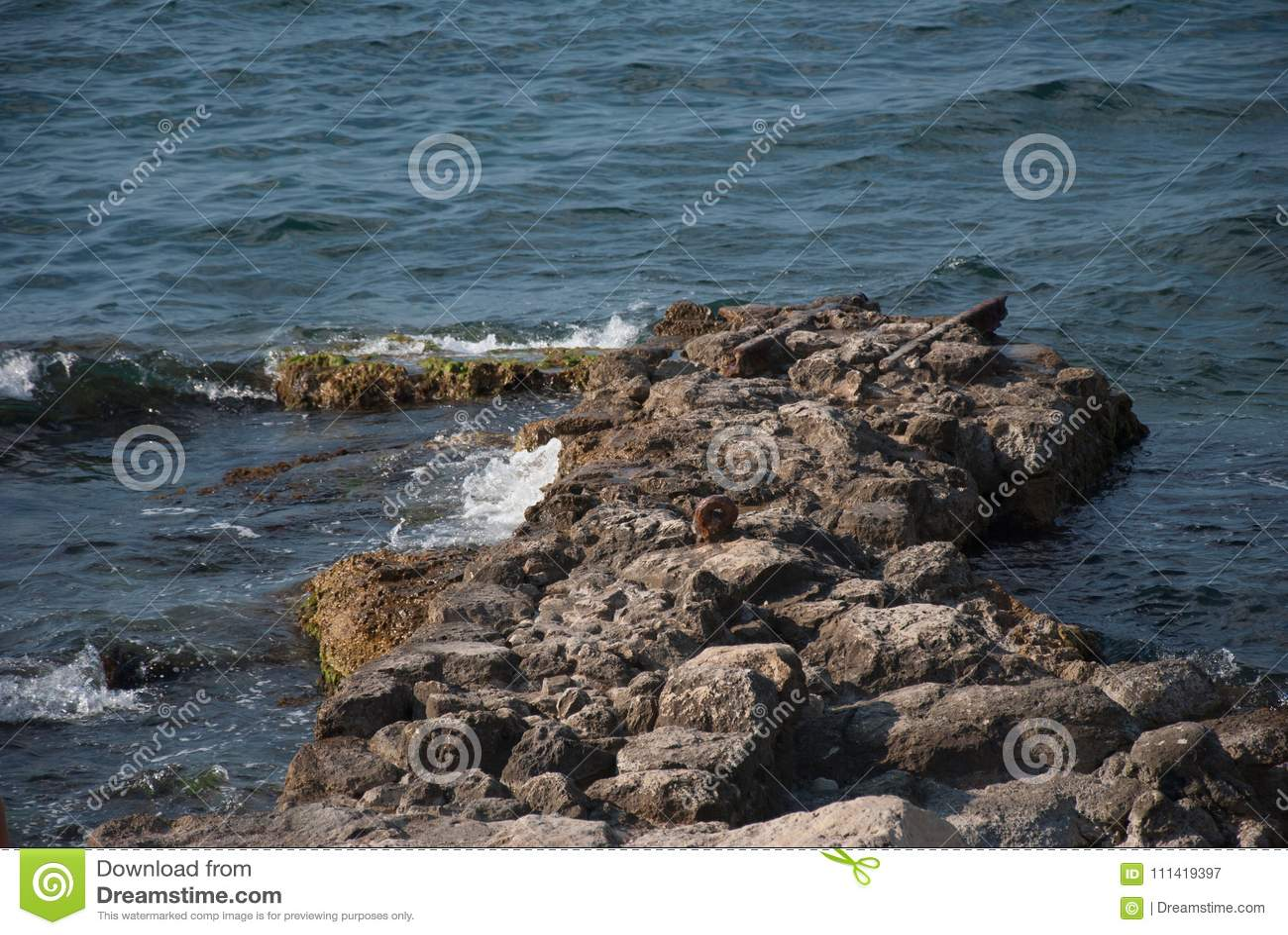 Rest in Crimea 7