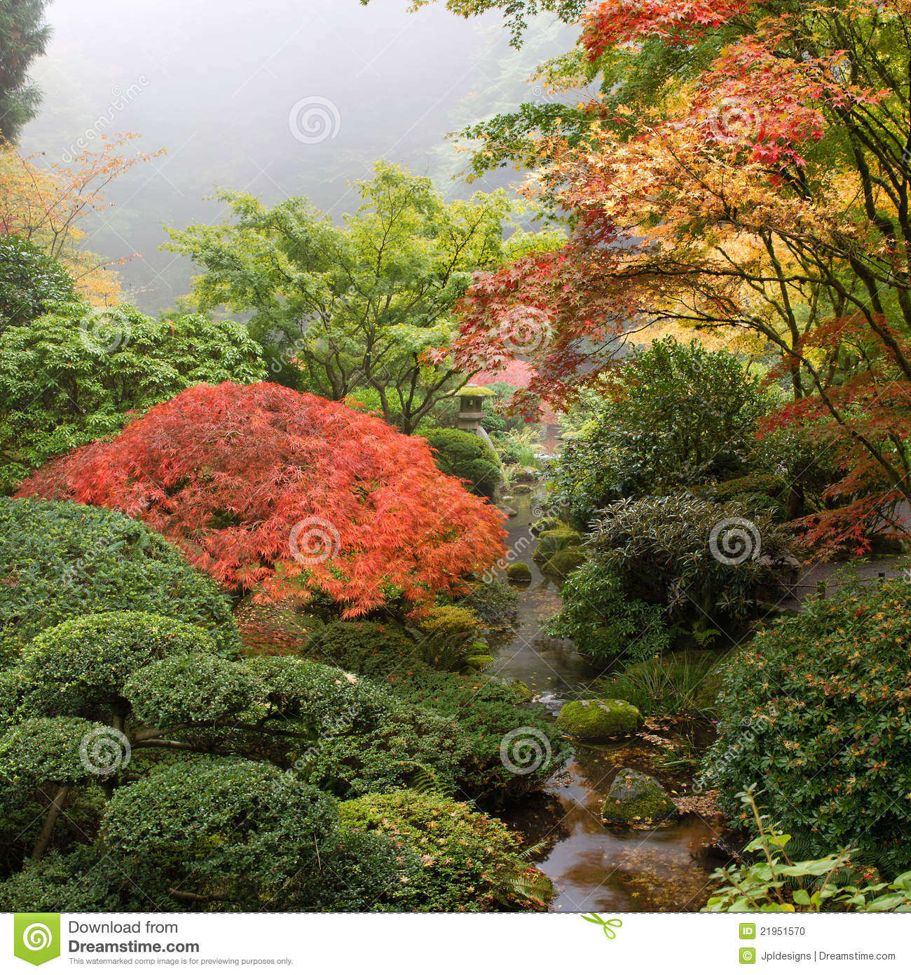 crique au jardin japonais en automne photo stock image du motif feuillage 21951570. Black Bedroom Furniture Sets. Home Design Ideas