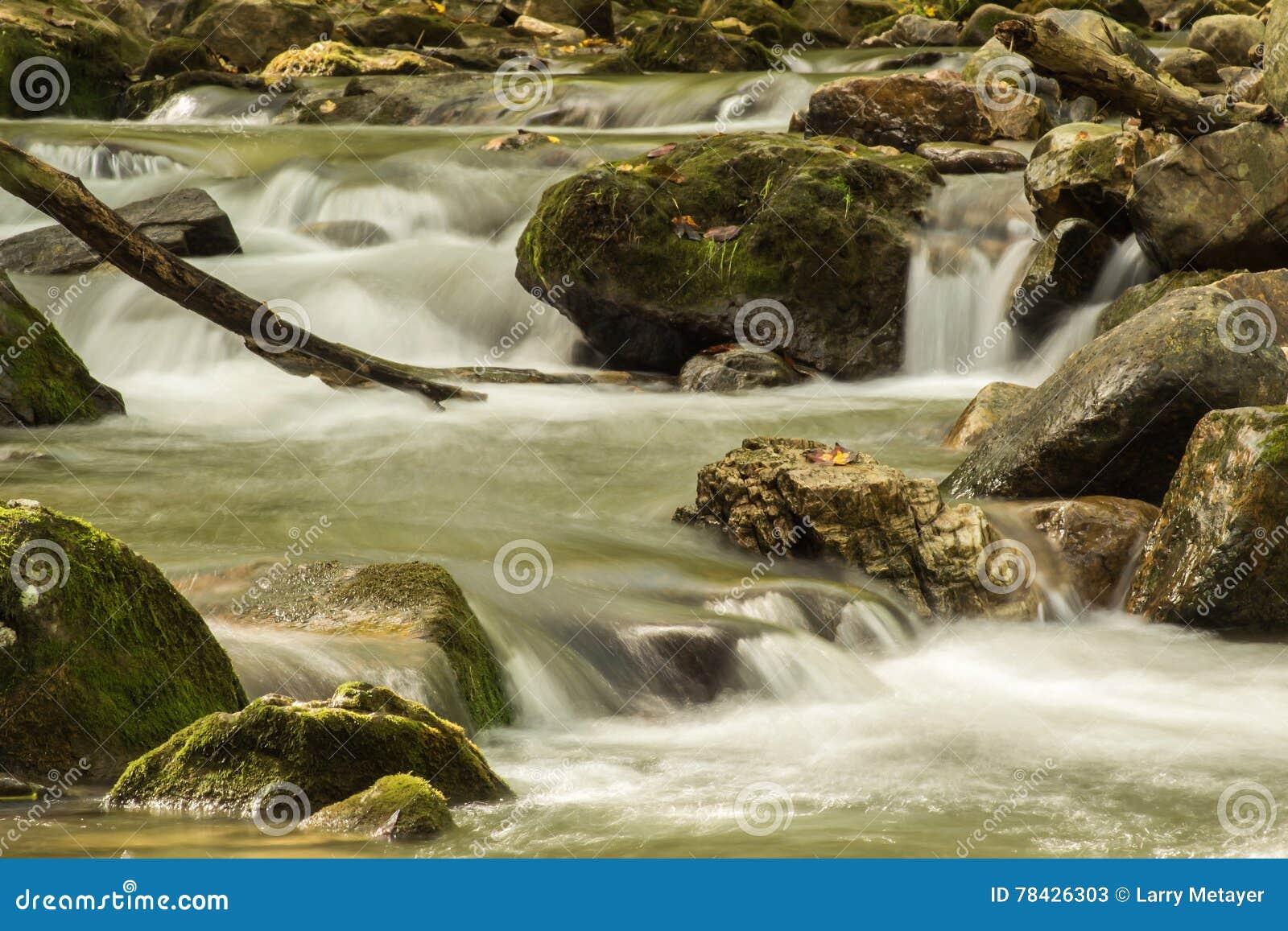 Crique courue par hurlement, Jefferson National Forest, Etats-Unis
