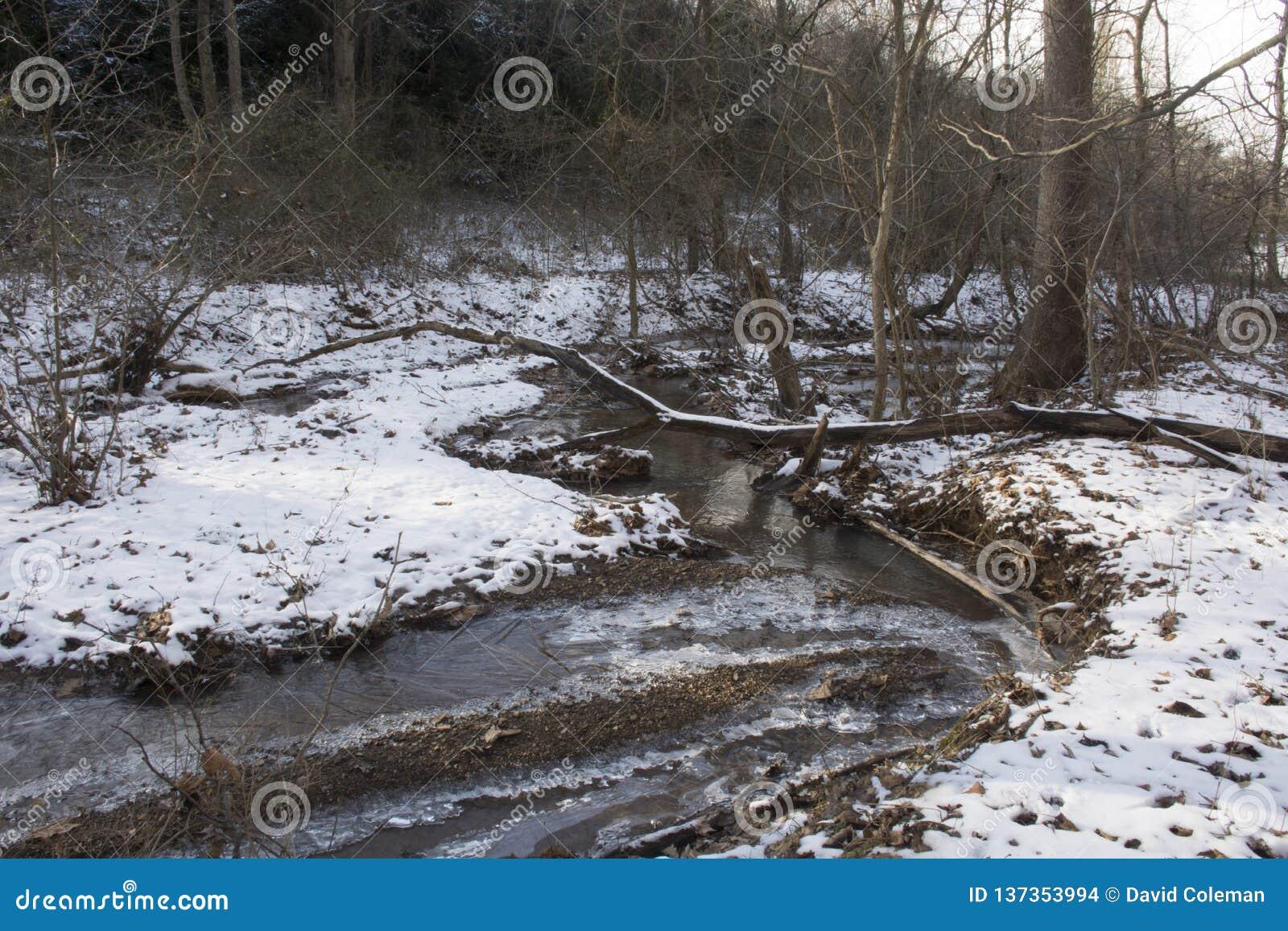 Crique dans le paysage gelé d hiver