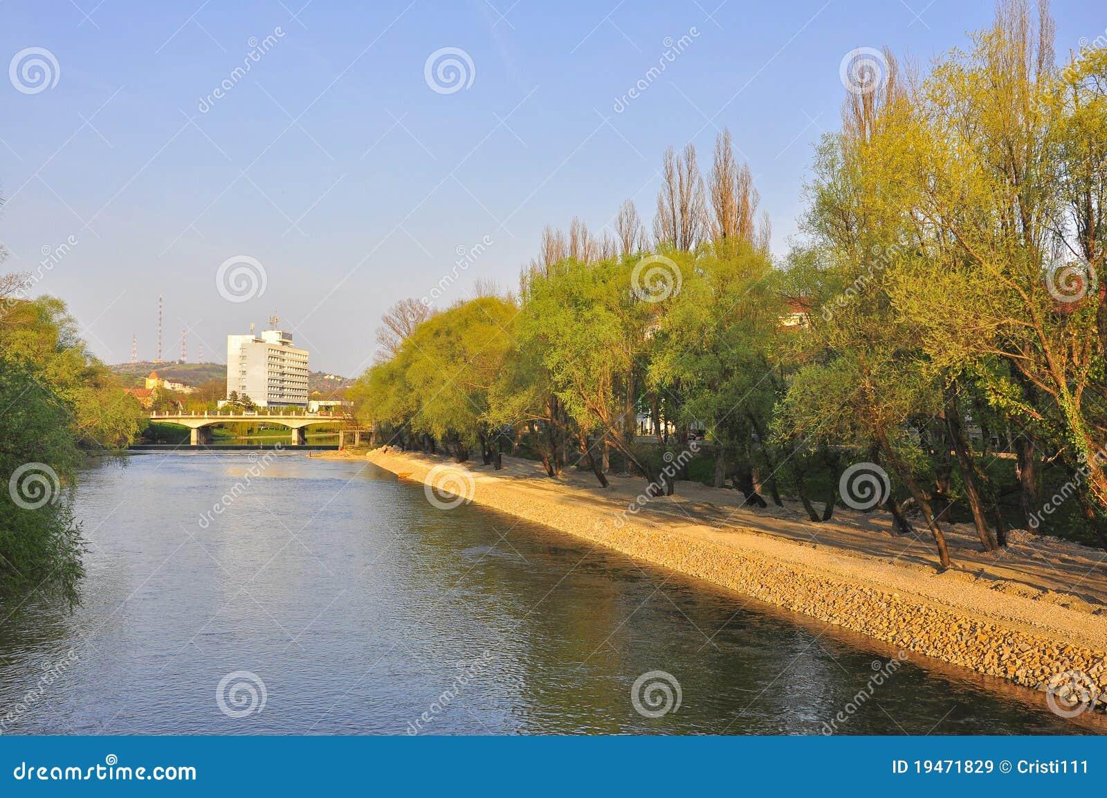 Cris river