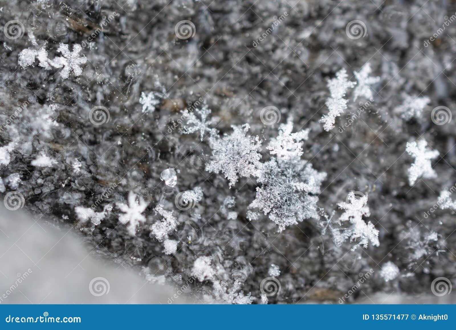 Cristalli di caduta del fiocco di neve su fondo di legno strutturato