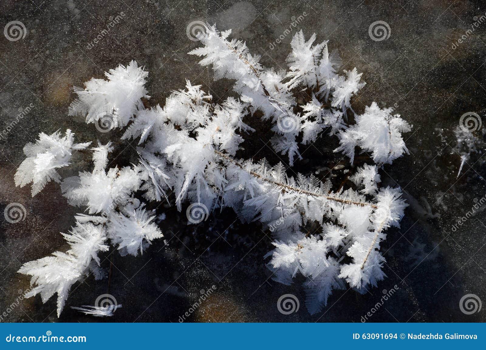 Download Cristaux De Neige Sur La Glace De La Rivière Photo stock - Image du novembre, glace: 63091694