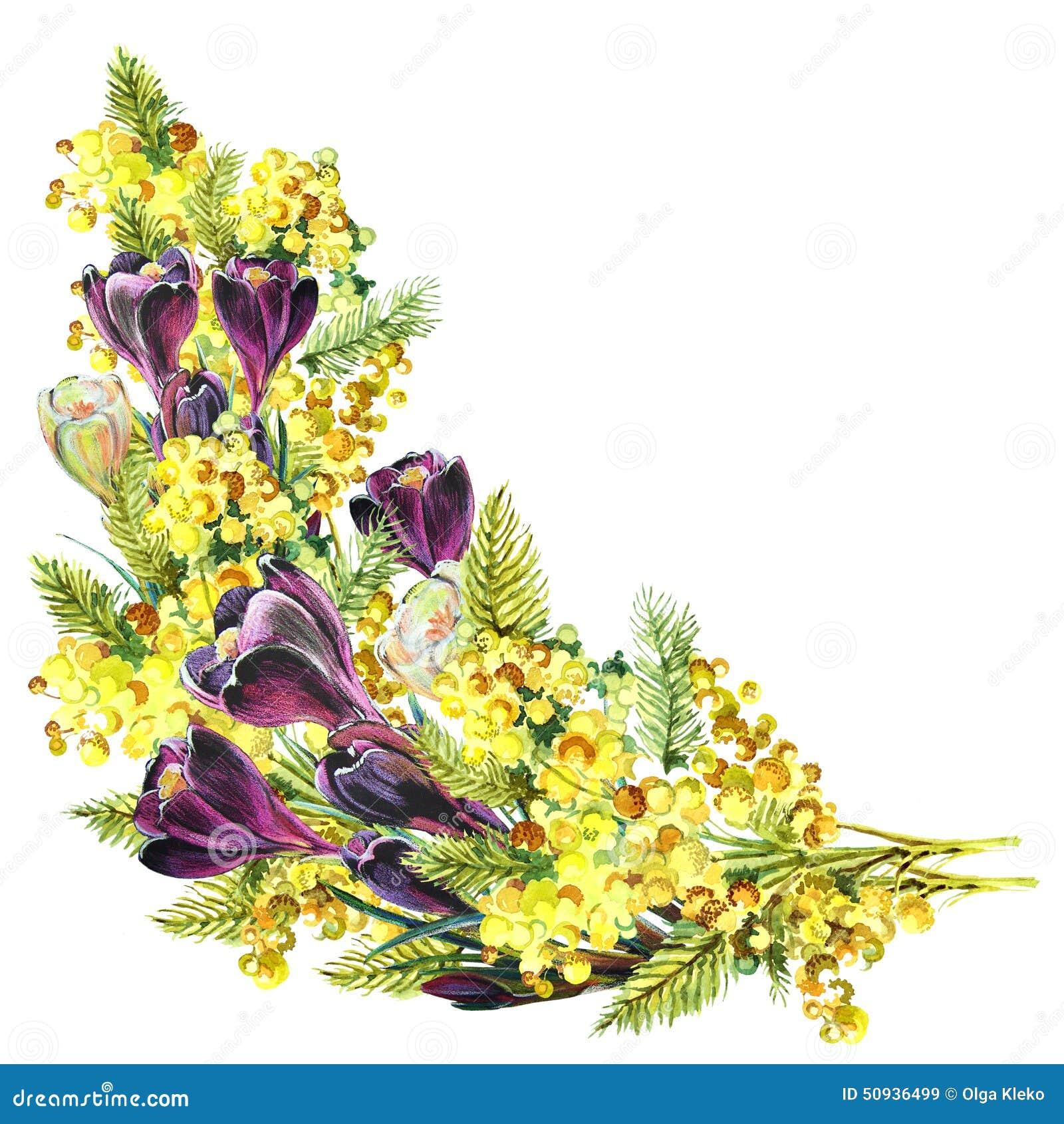 Croco del mazzo e mimosa acquerello illustrazione di for Progetti di costruzione del mazzo