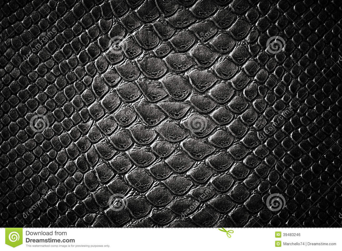 Crocodile Black Skin Texture Stock Photo - Image: 39483246