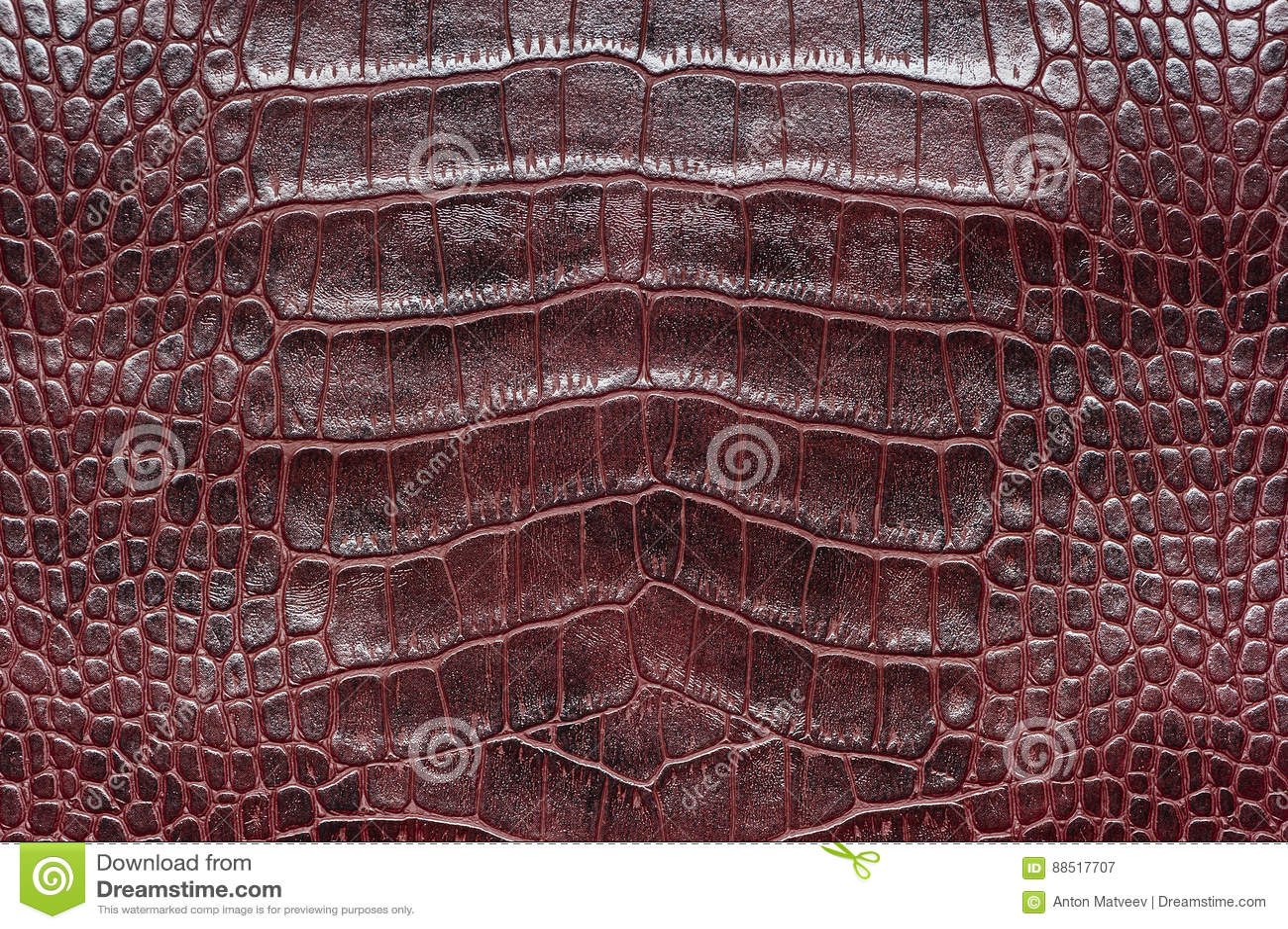Crocodile leather sample