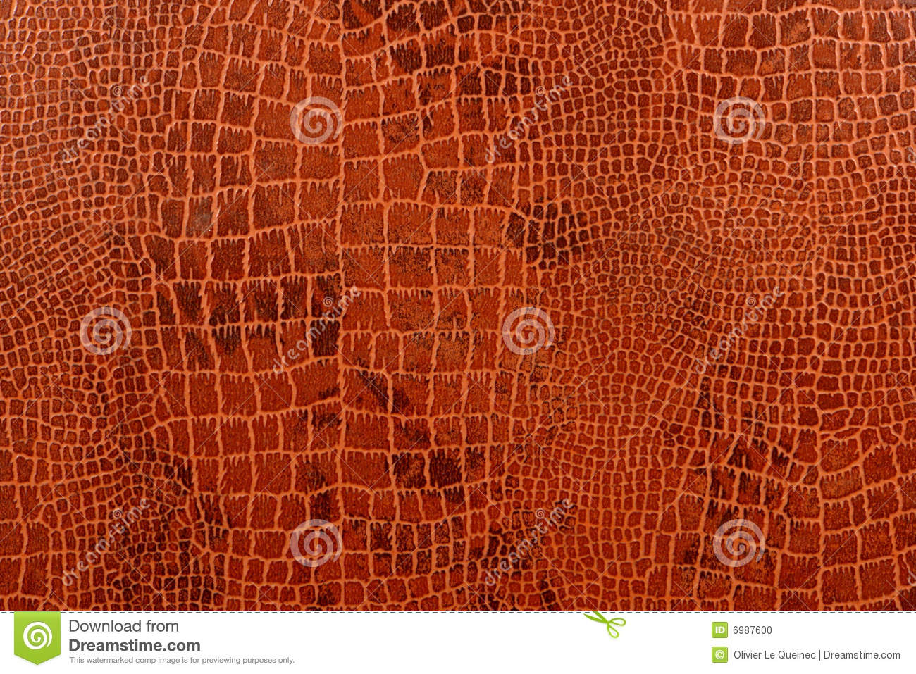 Crocodile Skin Background With Pattern Texture Stock Photo - Image ...
