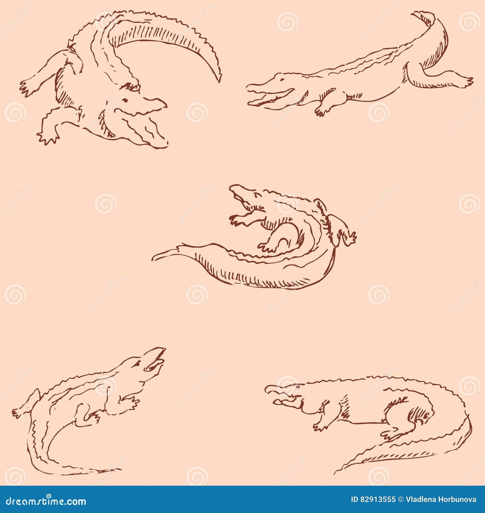 Crocodiles. Sketch pencil. Drawing by hand. Vintage colors. Vector