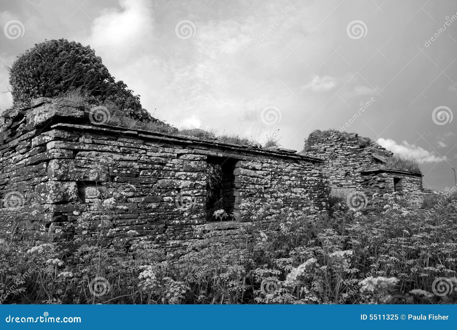 Croft opuszczony dom