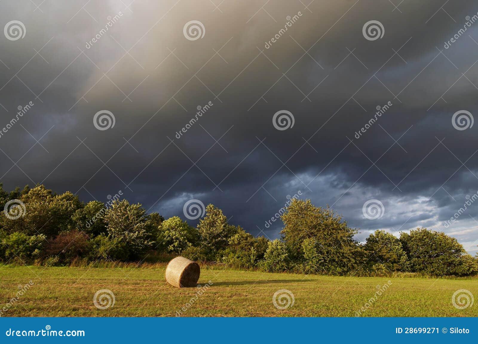 Croisement - avant pluie