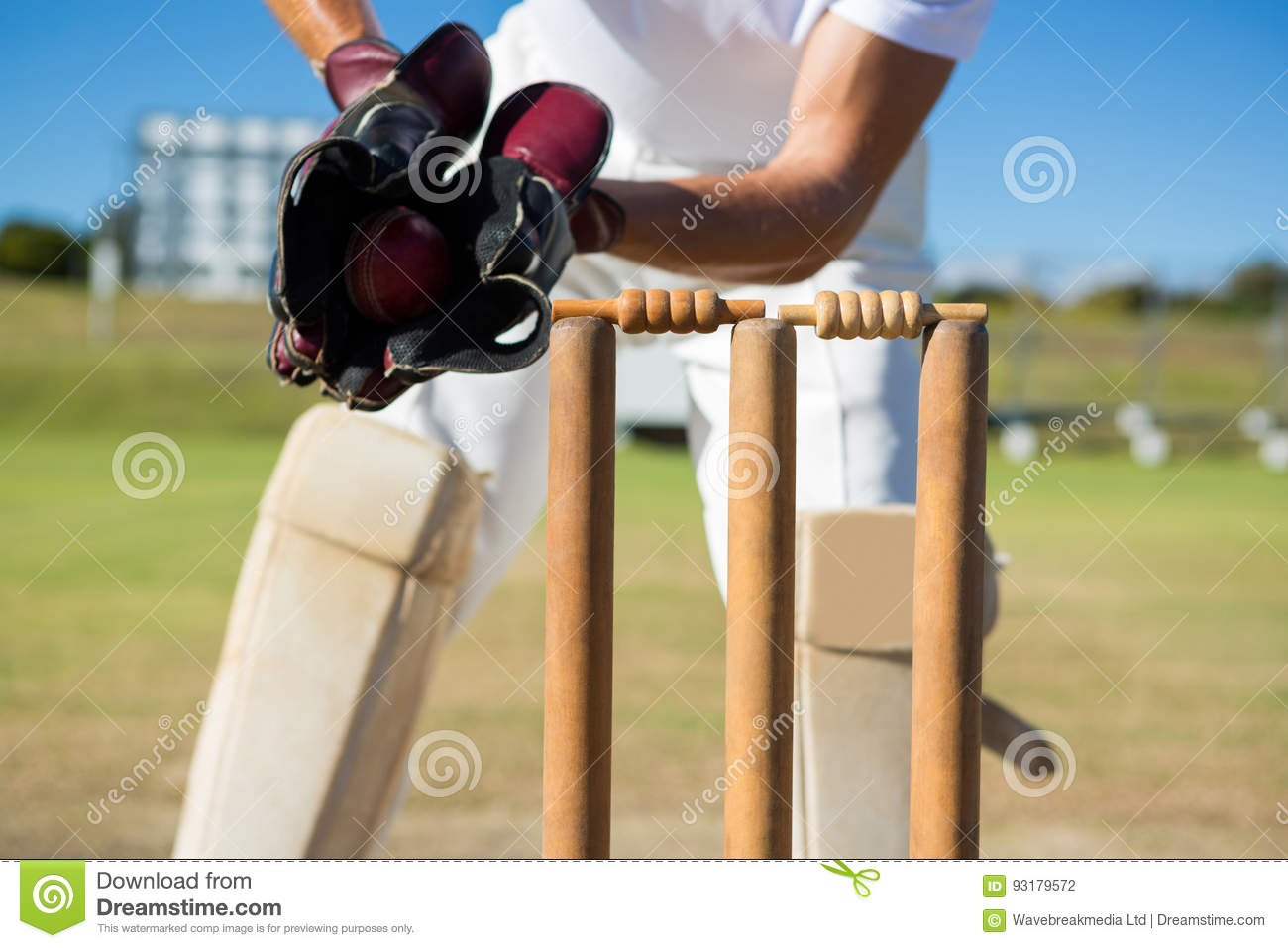 Cropped image of wicket keeper standing by stumps