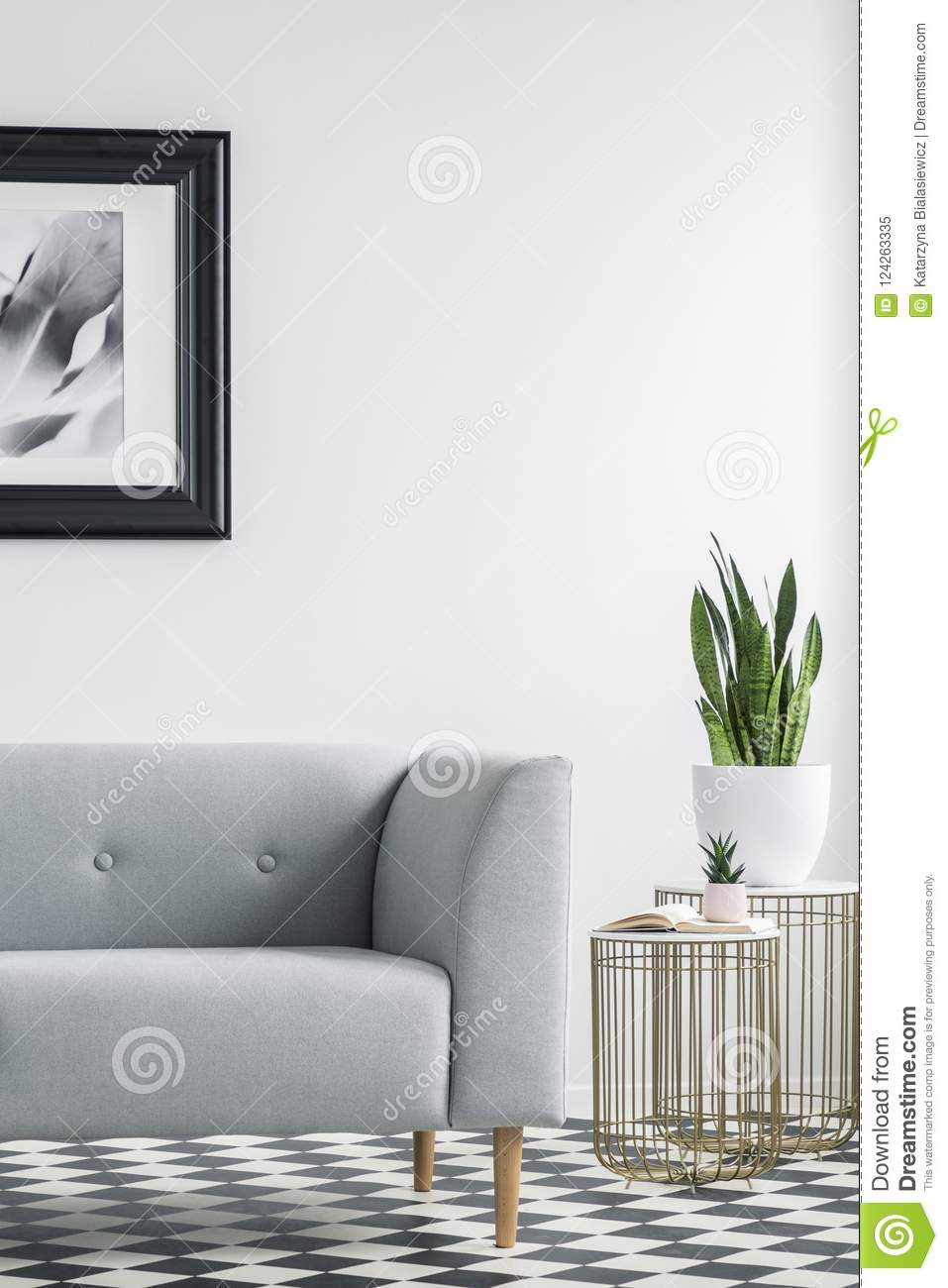 Download Cropped Photo Of A Grey Sofa Next To Golden Tables With Plants I  Stock Image