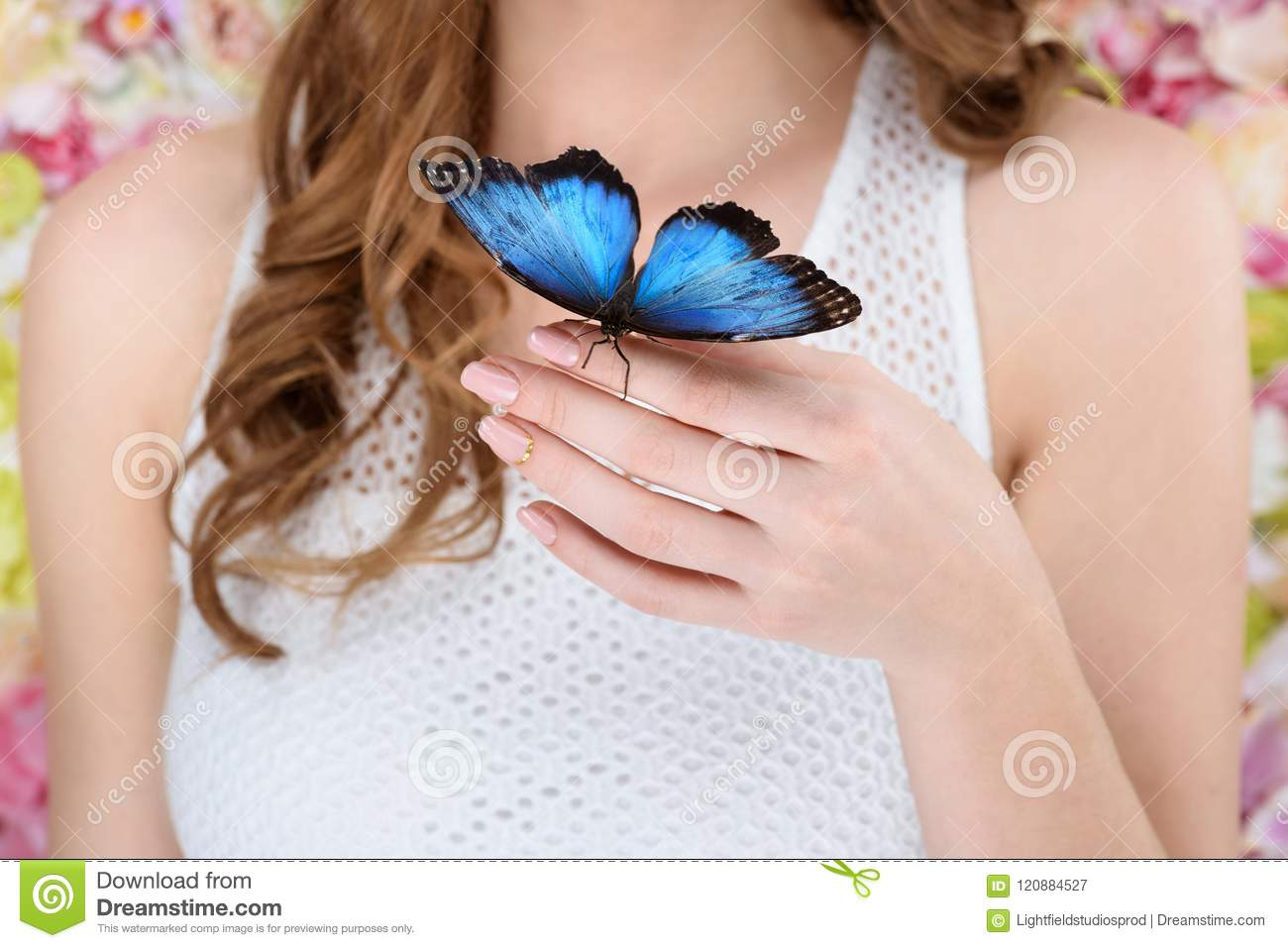 cropped shot of woman with beautiful blue butterfly