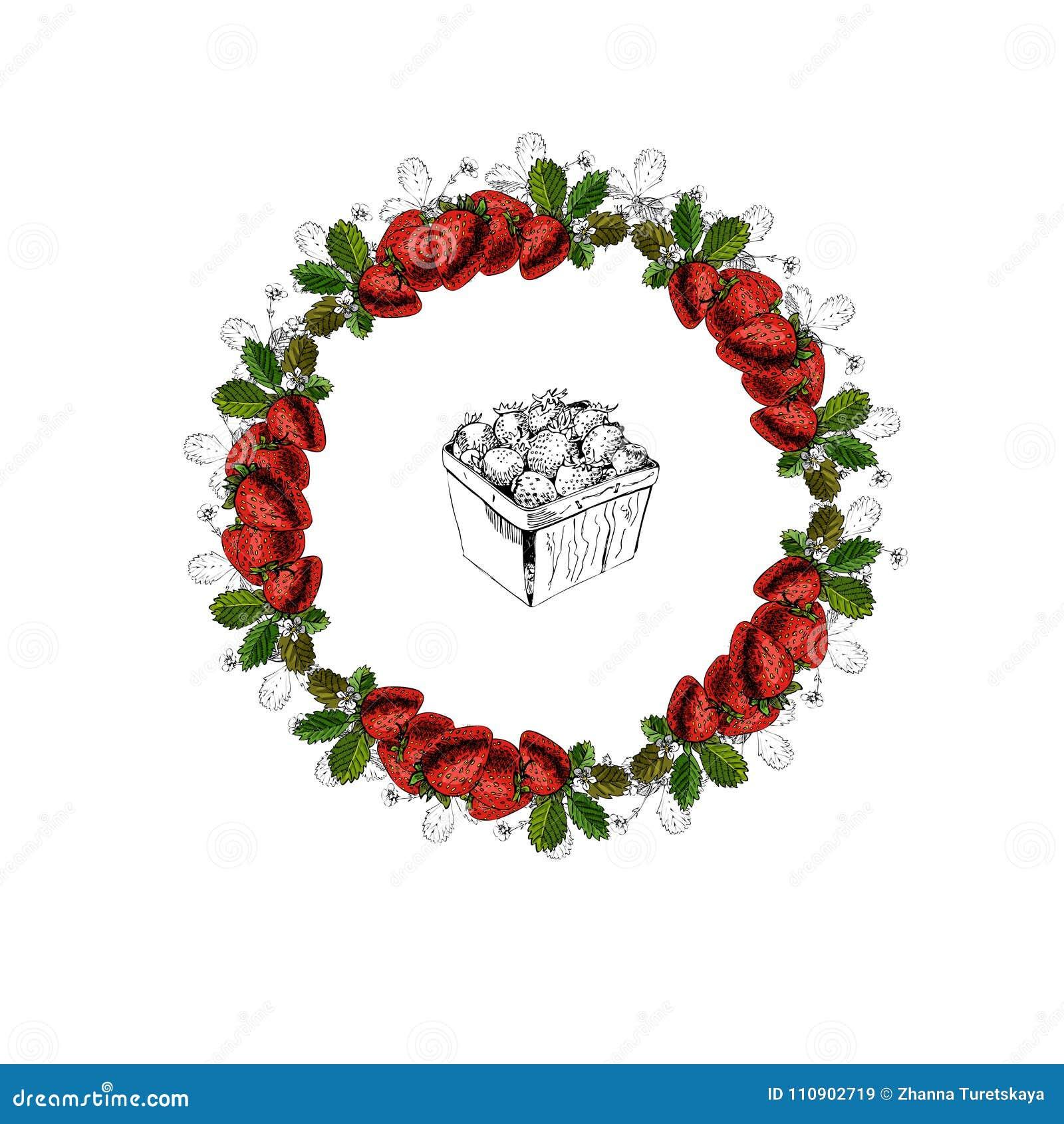 Croquis coloré tiré par la main avec la guirlande et le panier des fraises